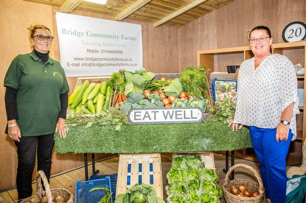 Have you ordered your Bridge Community Farms Veg Box ?!